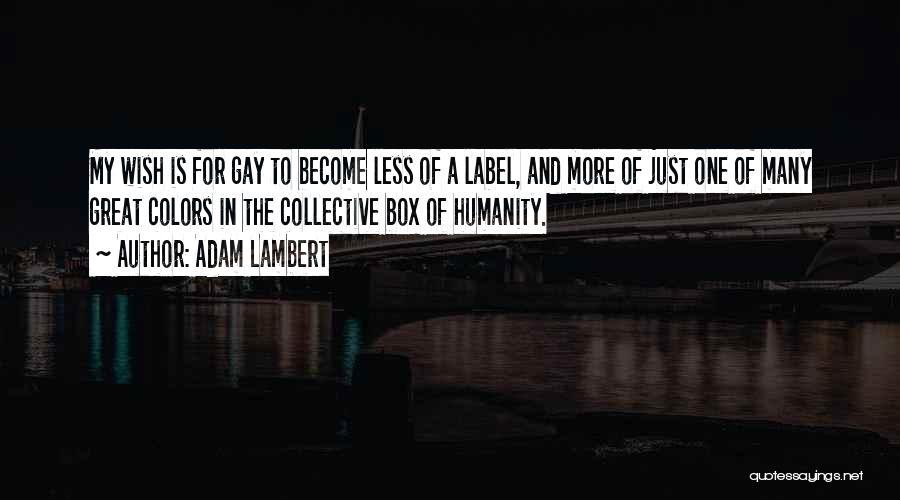 Just One Wish Quotes By Adam Lambert