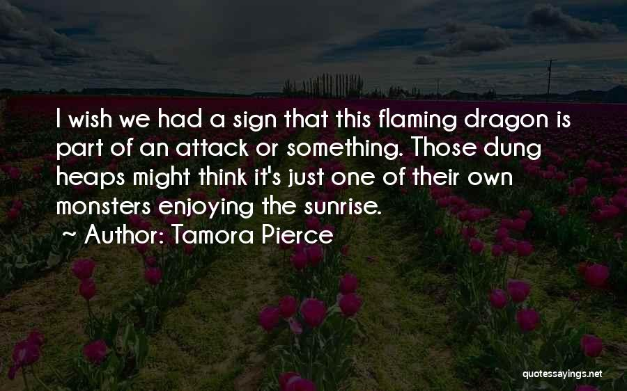 Just One Wish Quotes By Tamora Pierce