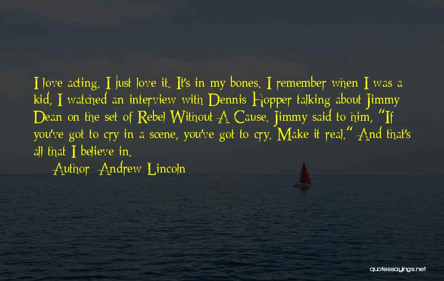 Just Remember That I Love You Quotes By Andrew Lincoln