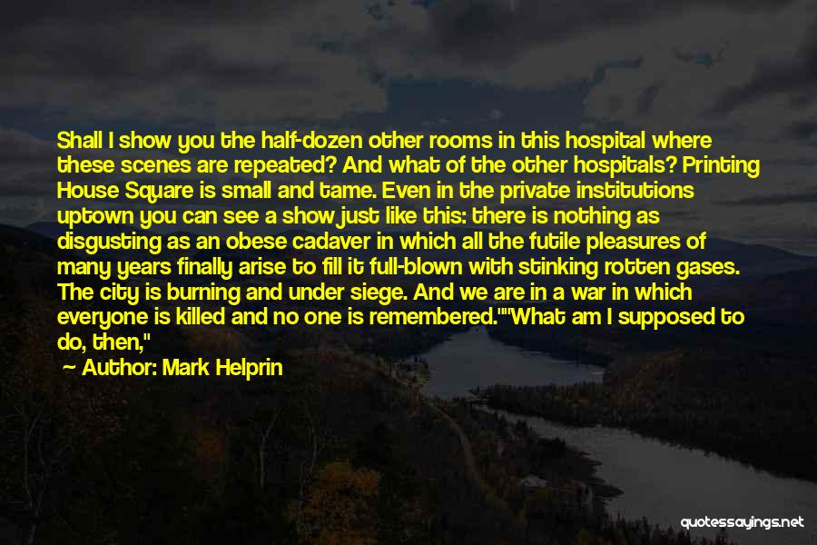 Just Remember That I Love You Quotes By Mark Helprin