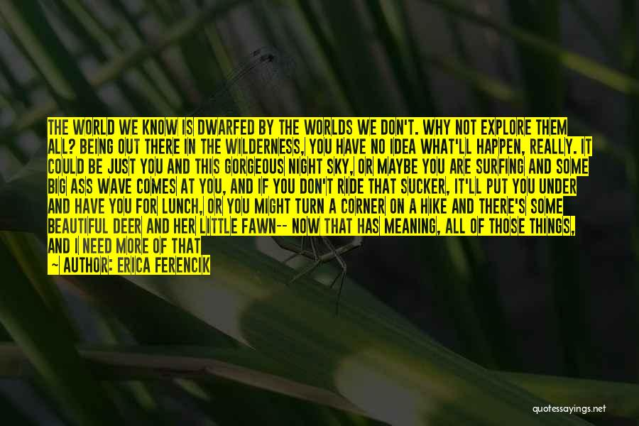 Just Trying To Live Life Quotes By Erica Ferencik
