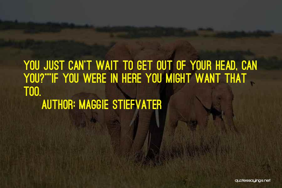 Just Want You Here Quotes By Maggie Stiefvater