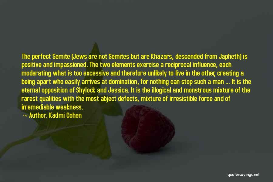 Kadmi Cohen Quotes 1510547