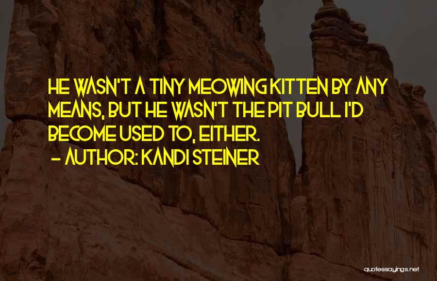 Kandi Steiner Quotes 607708
