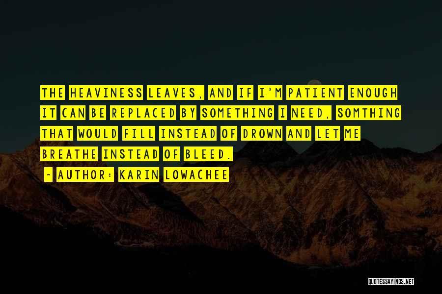 Karin Lowachee Quotes 2090787