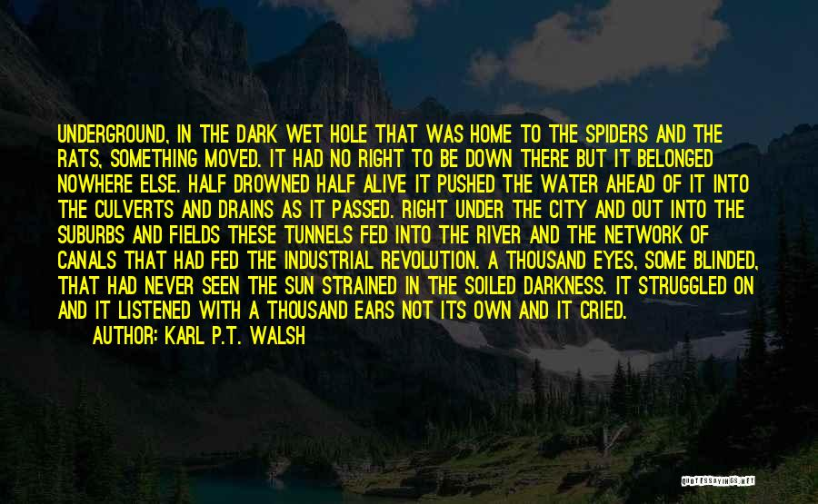 Karl P.T. Walsh Quotes 1108415