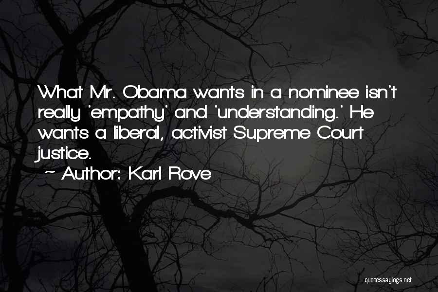 Karl Rove Quotes 1240287