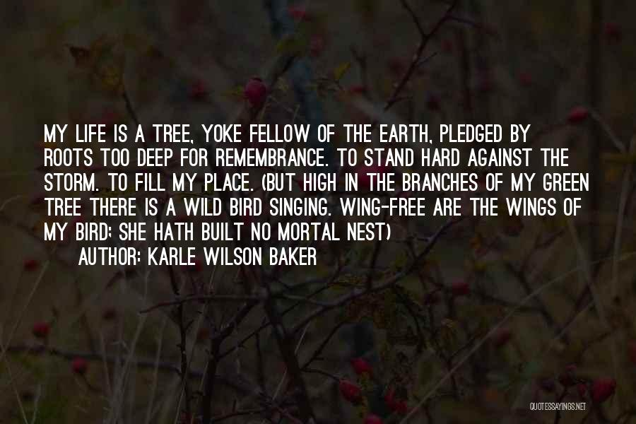 Karle Wilson Baker Quotes 107206