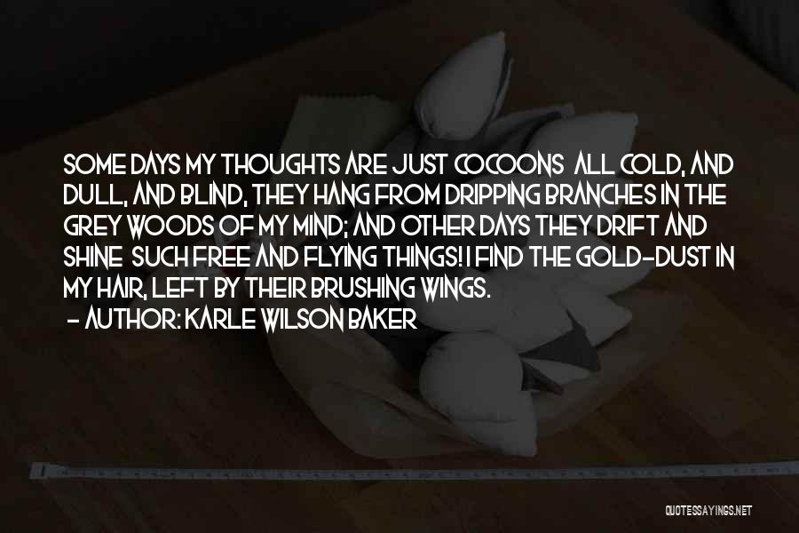 Karle Wilson Baker Quotes 750660