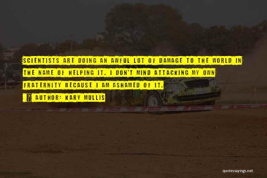 Kary Mullis Quotes 1156847