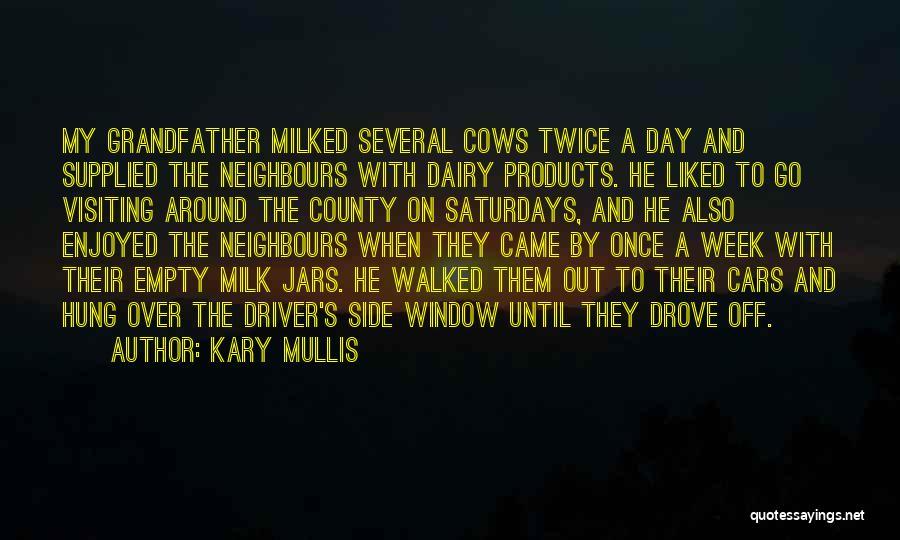Kary Mullis Quotes 244035