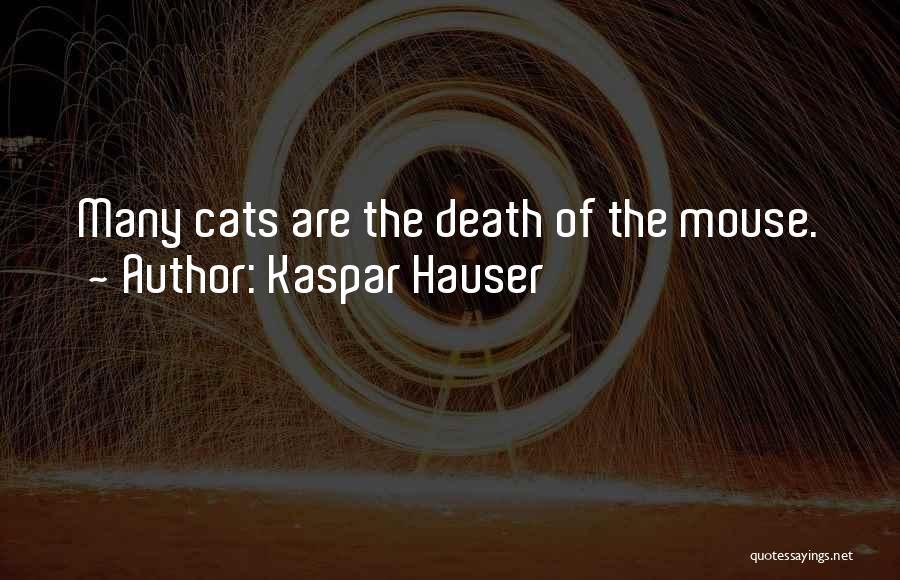 Kaspar Hauser Quotes 1038815