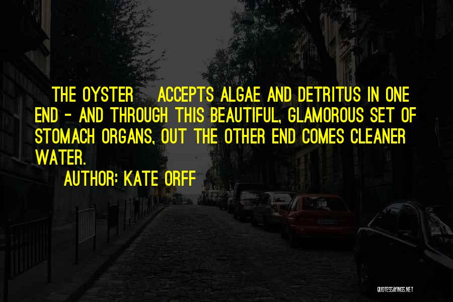 Kate Orff Quotes 1215877