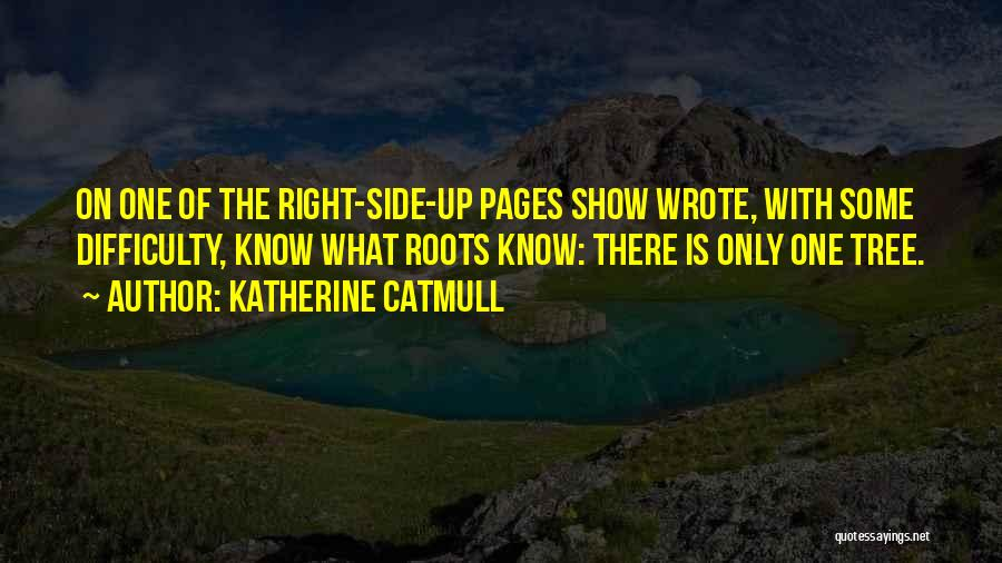 Katherine Catmull Quotes 1873281