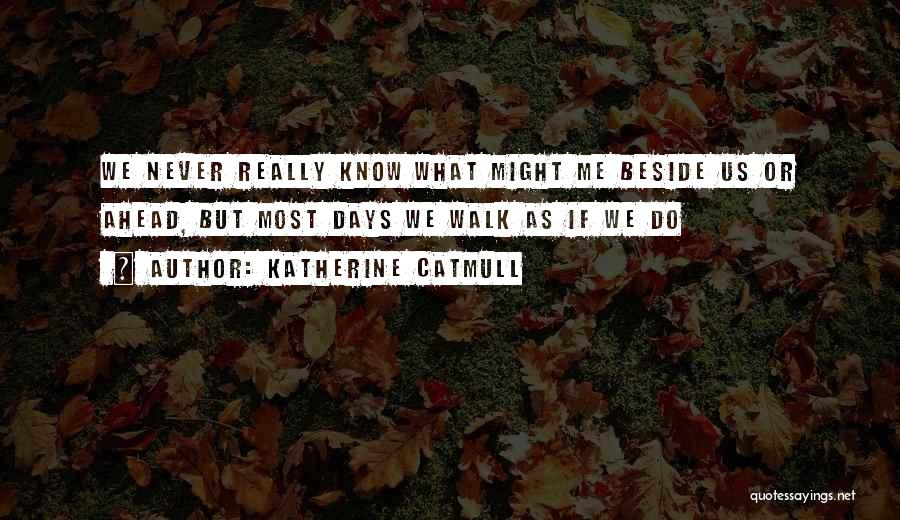 Katherine Catmull Quotes 474492