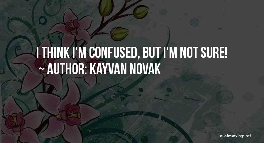 Kayvan Novak Quotes 352858