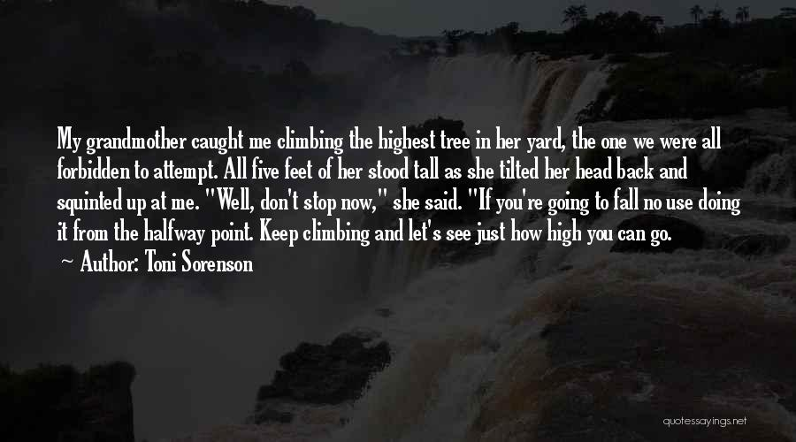 Keep Going Success Quotes By Toni Sorenson