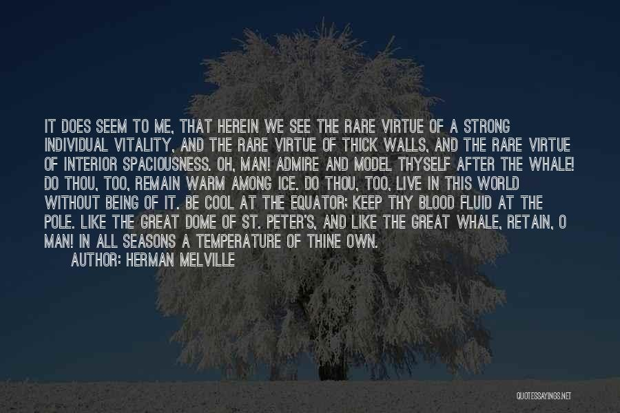 Keep On Being Strong Quotes By Herman Melville