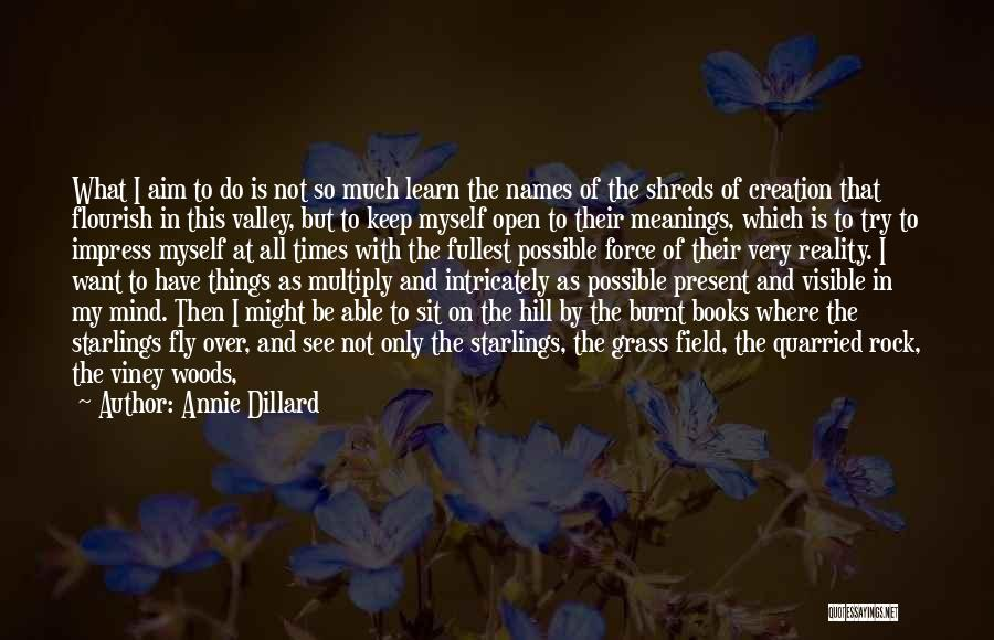 Keep One Eye Open Quotes By Annie Dillard