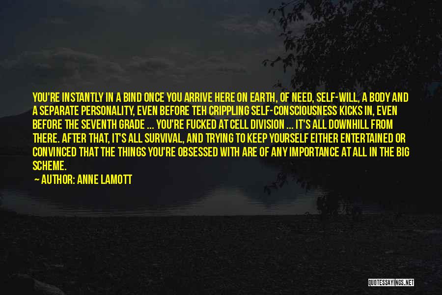 Keep Trying In Life Quotes By Anne Lamott