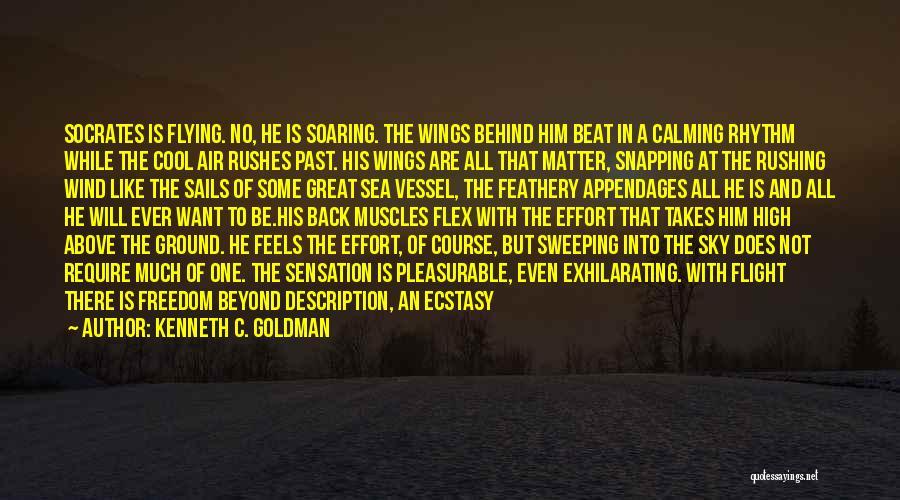 Kenneth C. Goldman Quotes 1736234
