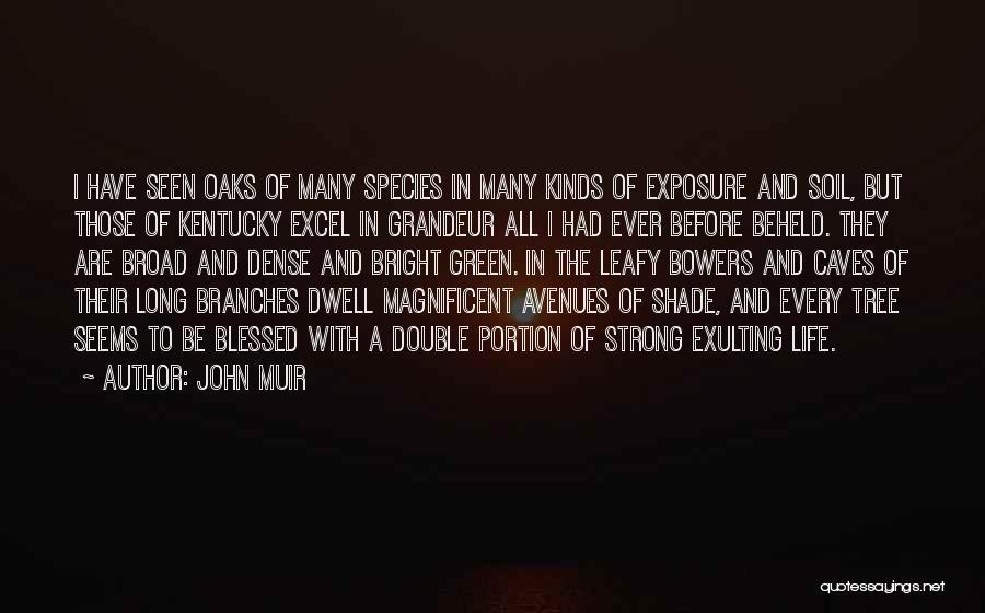 Kentucky Oaks Quotes By John Muir