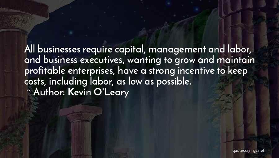 Kevin O'Leary Quotes 1134754