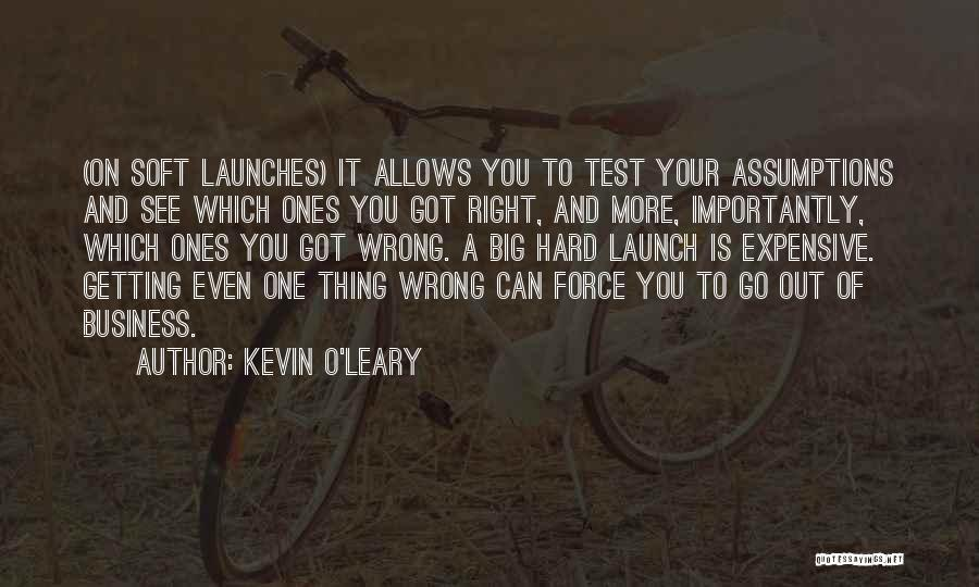 Kevin O'Leary Quotes 322456