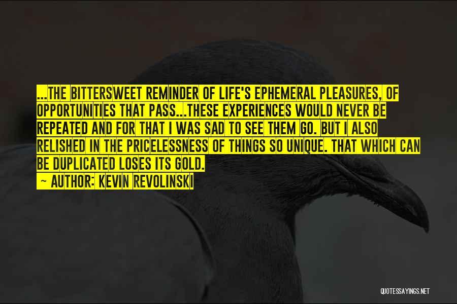Kevin Revolinski Quotes 1487549