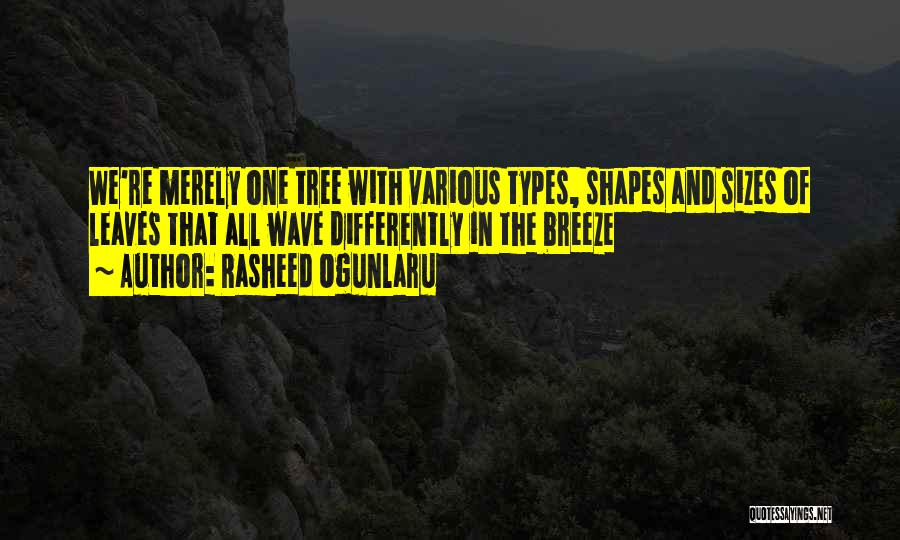 Kindness Thoughtfulness Quotes By Rasheed Ogunlaru