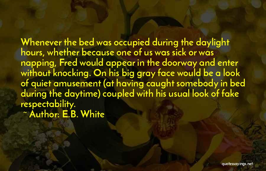 Knocking Quotes By E.B. White