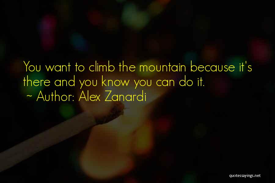 Know You Can Do It Quotes By Alex Zanardi