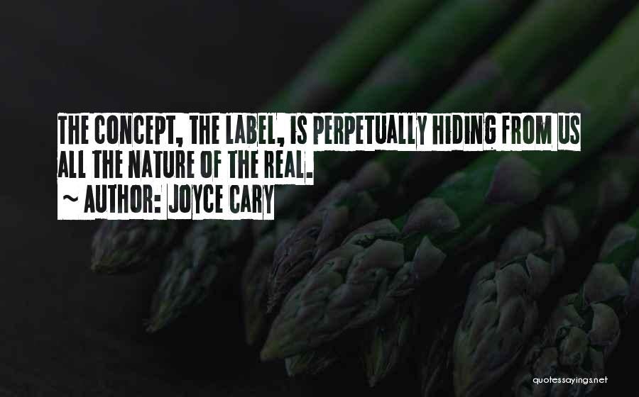 Knowing Someone Is Hiding Something From You Quotes By Joyce Cary