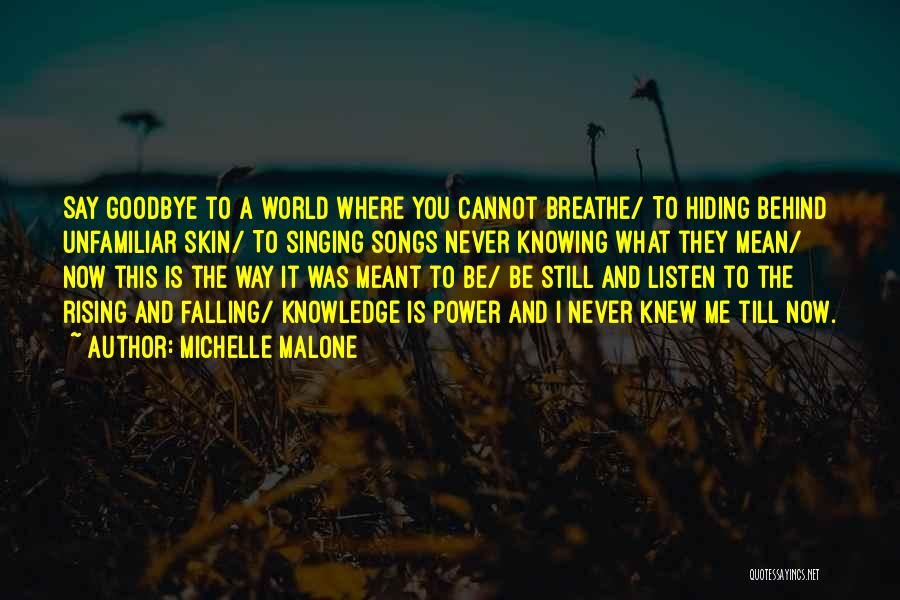 Knowing Someone Is Hiding Something From You Quotes By Michelle Malone