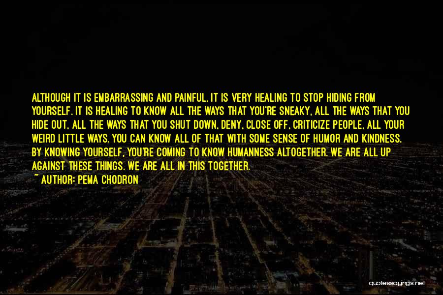 Knowing Someone Is Hiding Something From You Quotes By Pema Chodron
