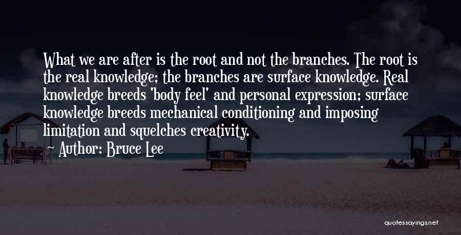 Knowledge And Creativity Quotes By Bruce Lee