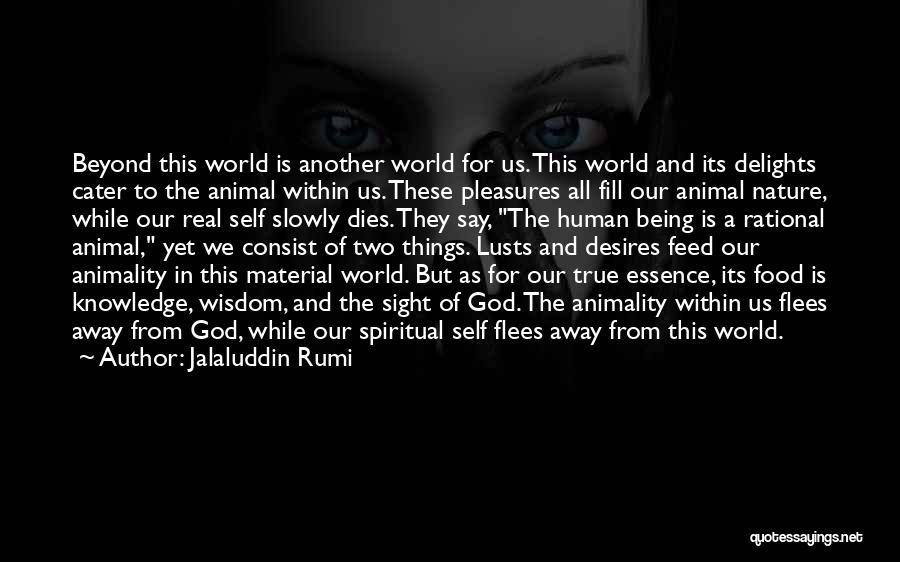 Knowledge Is Food Quotes By Jalaluddin Rumi
