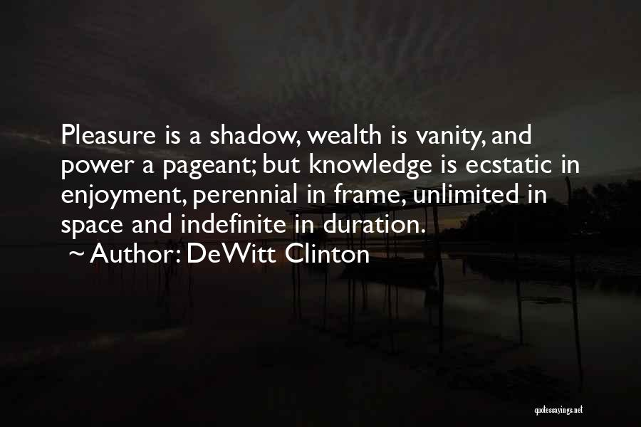 Knowledge Is Wealth Quotes By DeWitt Clinton