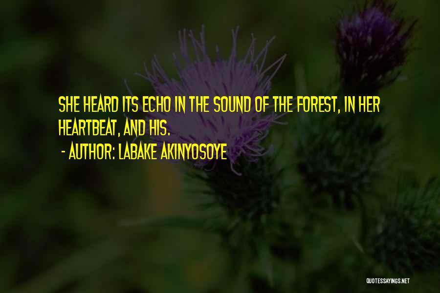 Labake Akinyosoye Quotes 1099522