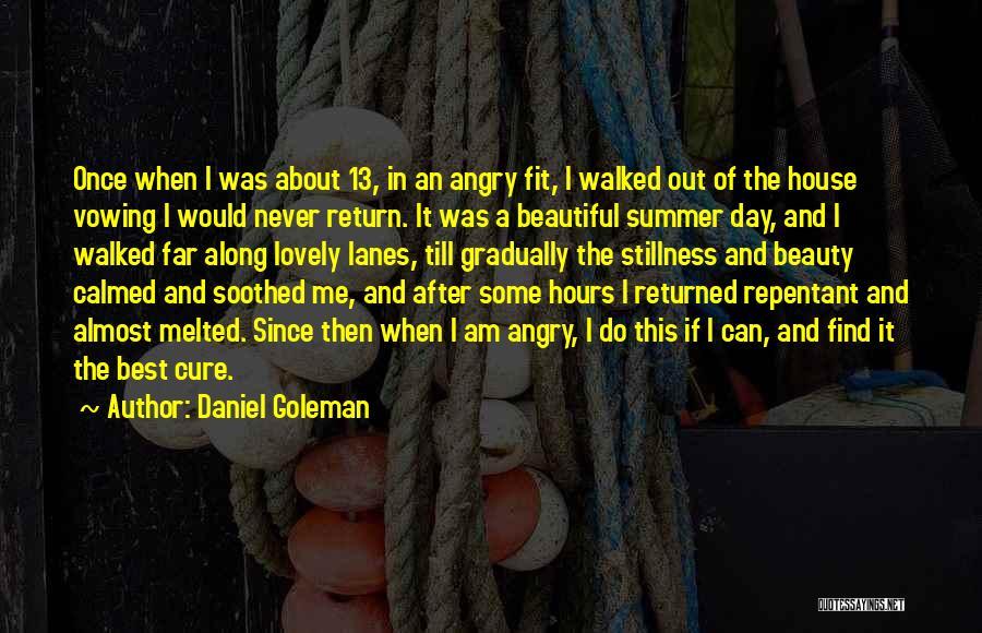 Lanes Quotes By Daniel Goleman