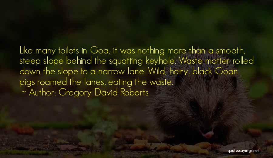 Lanes Quotes By Gregory David Roberts