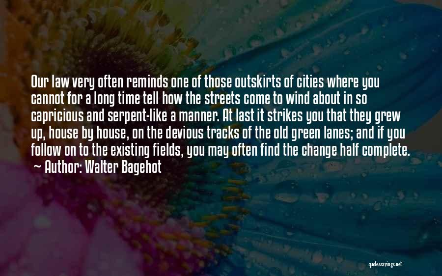 Lanes Quotes By Walter Bagehot