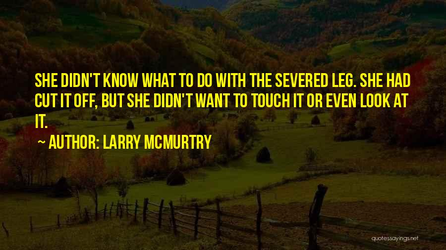 Larry McMurtry Quotes 1582125
