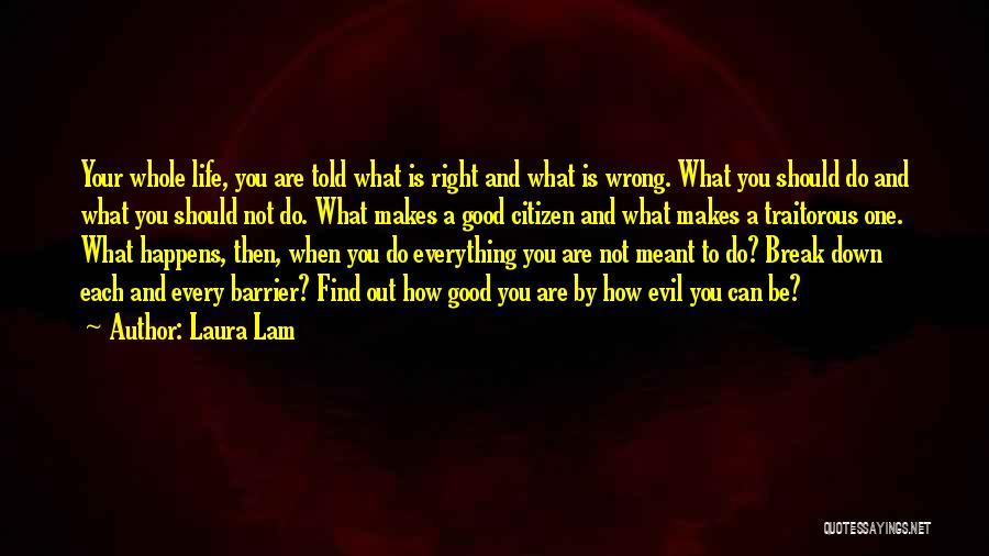 Laura Lam Quotes 1928602