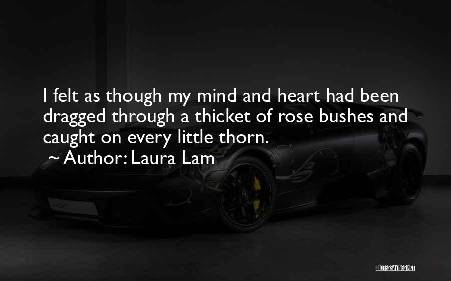 Laura Lam Quotes 747963