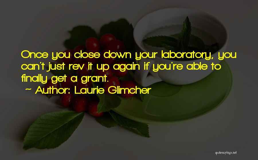 Laurie Glimcher Quotes 1176246