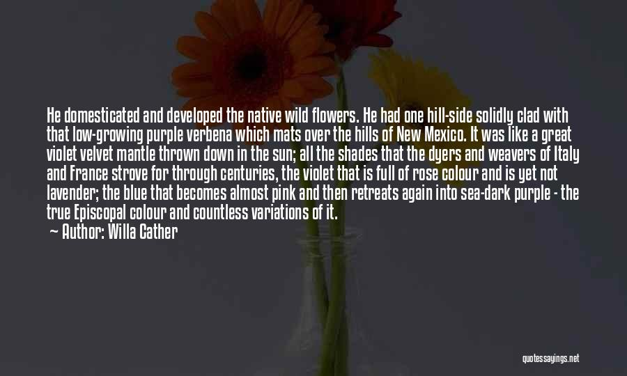 Lavender Rose Quotes By Willa Cather