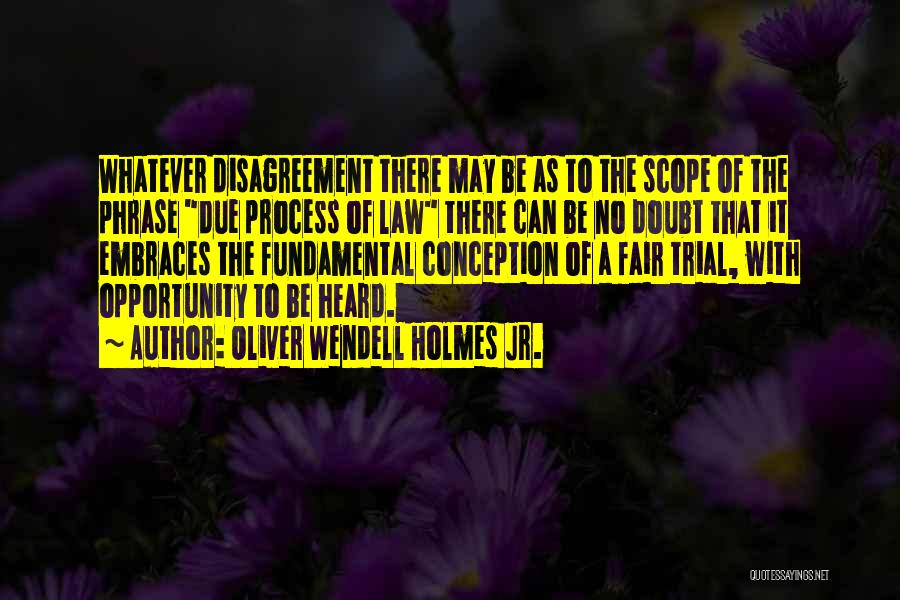 Law Is Not Fair Quotes By Oliver Wendell Holmes Jr.