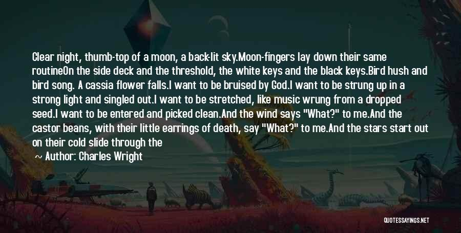 Lay Down With Me Quotes By Charles Wright