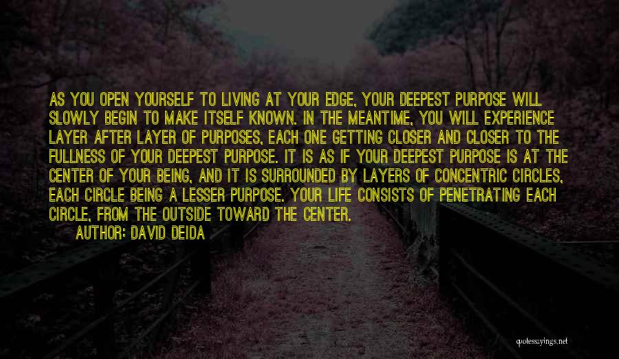 Layers Of Life Quotes By David Deida